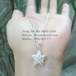 Dây chuyền Sao Biển – Ngôi sao của biển DCNU157