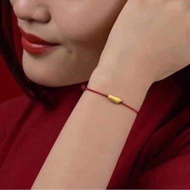 lac-tay-hat-gao-vang-cho-nam-canh-ty-bacminhcanh-4-380x380