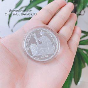 dong-bac-trang-hoa-xoe-dong-duong-bacminhcanh-4-300x300